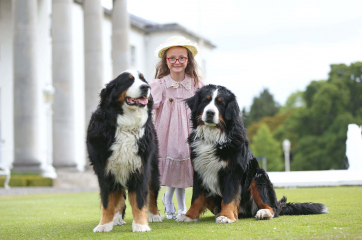 Pictured before meeting the President and enjoying the President's two dogs Shadow and Brod was the Grand Niece of Sabina Higgins Esme McKiernan Becker.