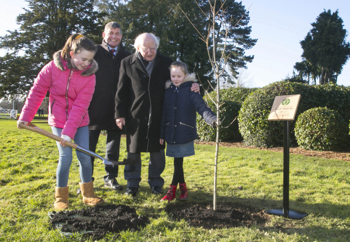 President marks UN International Year of Plant Health 2020 with a tree planting ceremony